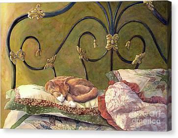 Catnap Canvas Print - Sunbeam Dreamin by Malanda Warner