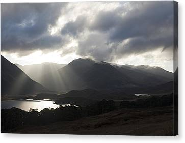 Sunbeams In Glen Affric Canvas Print by Sue Arber