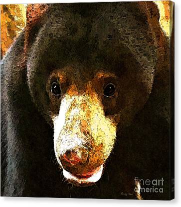Thailand Canvas Print - Sun Bear by Stacey Chiew
