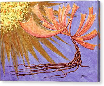 Sundancer Canvas Print by Charles Cater