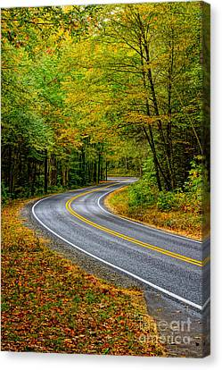 Sunday Drive Canvas Print by Matthew Trudeau