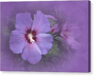 Sunday Hibiscus Canvas Print