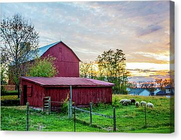 Sundown Heading To Barn Canvas Print by Randall Branham
