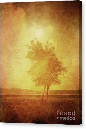 Sundown Landscape Canvas Print by Lutz Baar