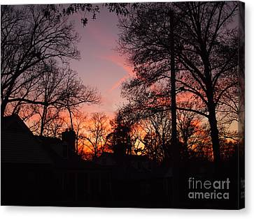 Sundown Canvas Print by Nancy Kane Chapman