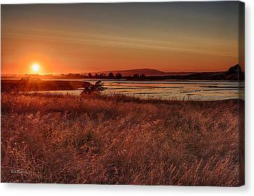 Sundown On Elkhorn Slough Canvas Print by Bill Roberts