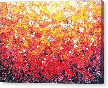 Sundrops Canvas Print by Rachel Bingaman