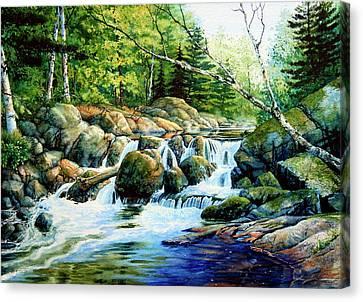 Sunfish Creek Canvas Print
