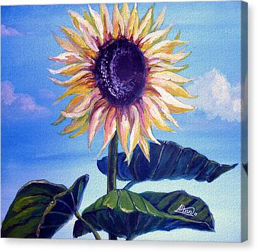 Sunflower Canvas Print by Alban Dizdari