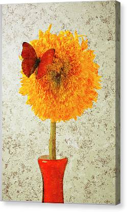 Vibrant Canvas Print - Sunflower And Red Butterfly by Garry Gay