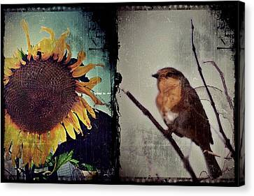 Sunflower Bird Diptych Canvas Print by Patricia Strand