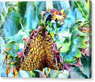 Sunflower Carnaval - Carnaval De Girasole Canvas Print by Janine Riley