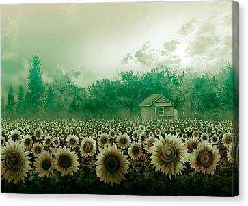 Digital Sunflower Canvas Print - Sunflower Field Green by Bekim Art