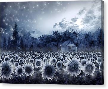 Digital Sunflower Canvas Print - Sunflower Field  by Bekim Art