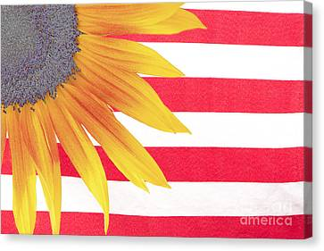 Sunflower Flag Canvas Print by James BO  Insogna
