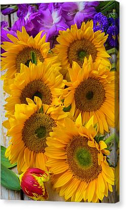 Sunflower Gathering Canvas Print by Garry Gay