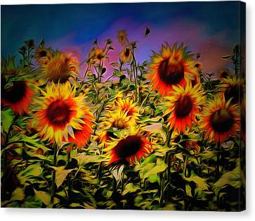 Sunflower Breeze Canvas Print by Dorothy Berry-Lound