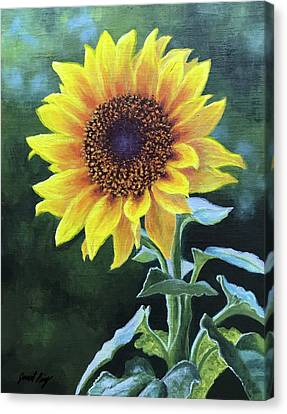 Sunflower Canvas Print by Janet King
