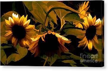 Sunflower Light Canvas Print