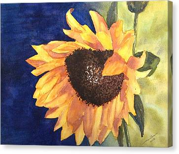 Sunflower Canvas Print by Monika Deo