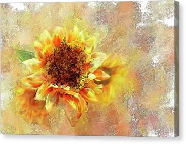 Sunflower On Fire Canvas Print