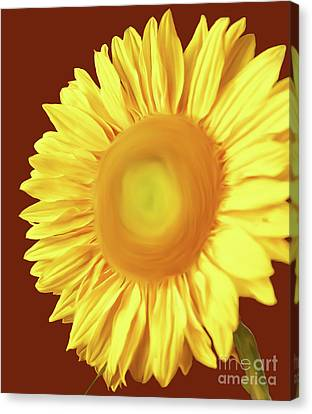 Sunflower Painted Version 1 Canvas Print