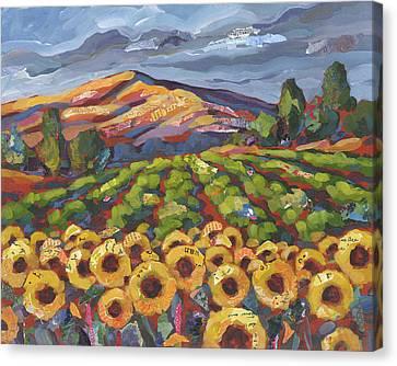 Sunflower Ranch Canvas Print