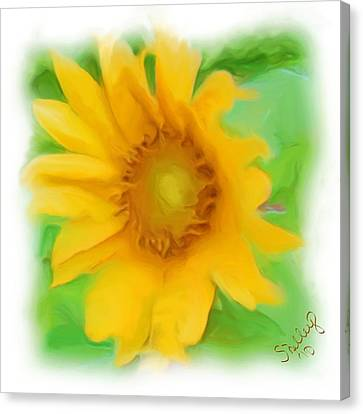 Canvas Print featuring the painting Sunflower by Shelley Bain