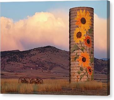 Sunflower Silo In North Boulder County Colorado Color Print Canvas Print by James BO  Insogna
