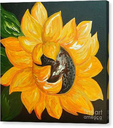 Sunflower Solo Canvas Print by Eloise Schneider