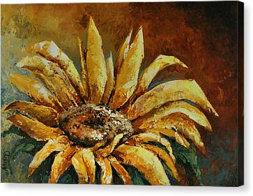 Sunflower Study Canvas Print by Michael Lang
