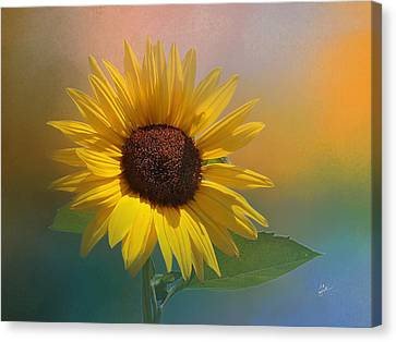 Sunflower Summer Canvas Print