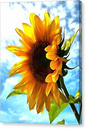 Sunflower - Sun Shine On Canvas Print by Janine Riley