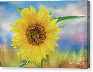 Sunflower Surprise Canvas Print by Bonnie Barry