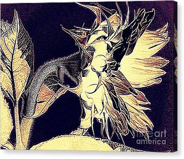 Sunflower - Tribal Harvest Canvas Print by Janine Riley