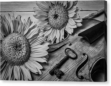 Sunflowers And Violin Black And White Canvas Print