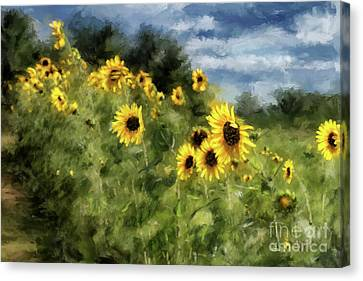 Sunflowers Bowing And Waving Canvas Print