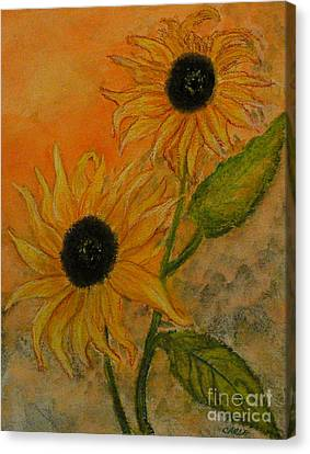 Sunflowers Canvas Print by Carla Stein