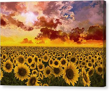 Digital Sunflower Canvas Print - Sunflowers Field 1 by Bekim Art