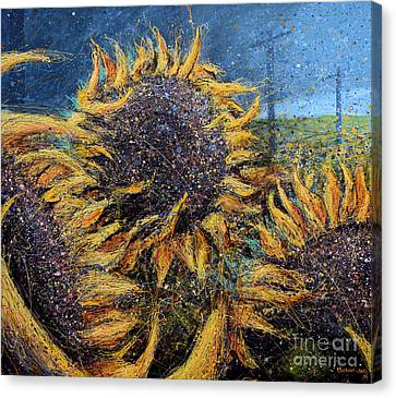 Sunflowers In Field Canvas Print by Michael Glass