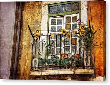 Sunflowers In The City Canvas Print