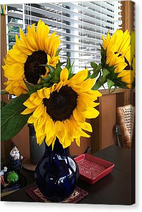 Sunflowers Canvas Print by Molly Williams