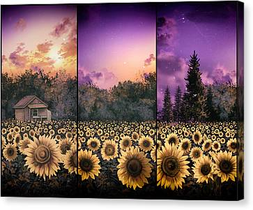 Digital Sunflower Canvas Print - Sunflowers Triptych 2 by Bekim Art