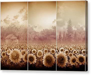 Digital Sunflower Canvas Print - Sunflowers Triptych 3 by Bekim Art