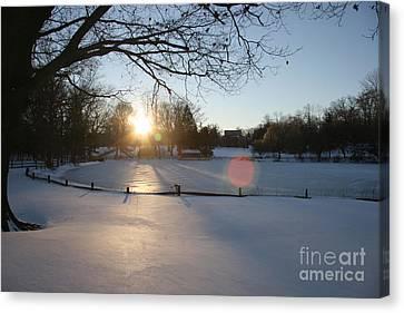 Sunlight On A Frozen Pond  Canvas Print