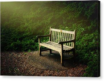 Sunlight On Park Bench Canvas Print