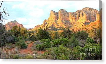 Sunlight On Sedona Rocks Canvas Print