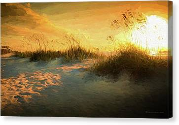 Sunlight On The Dunes Canvas Print