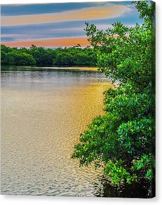 Canvas Print featuring the photograph Sunlight On The Marsh by Steven Ainsworth