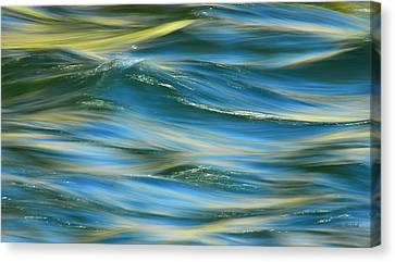 Sunlight Over The River Canvas Print by Donna Blackhall